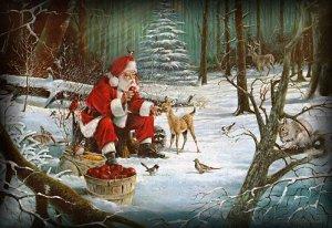 Winterliche Weihnachtsbilder.Forum übersicht 05 Dezember 2012 Knuts 6 Geburtstag